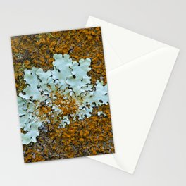 Orange and green moss in tree bark Stationery Cards