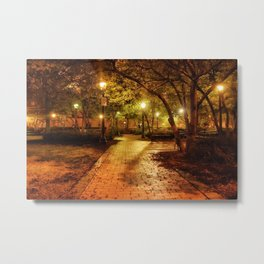 Night Park Scene Metal Print