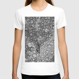 silvery leaf T-shirt