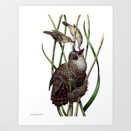 Baby Bird I Art Print