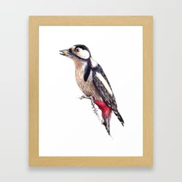Great Spotted Woodpecker Framed Art Print