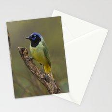 Green Jay Stationery Cards