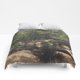 Tree Growing Sideways Comforters