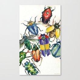 Watercolor Beetles Canvas Print