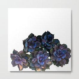 Succulents IIII Metal Print