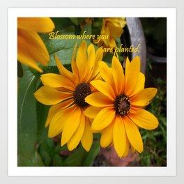 Blossom Where You Are Planted Art Print
