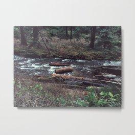 Where river meets ocean Metal Print