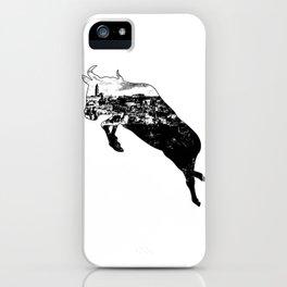 Matera - Sassi inOx iPhone Case