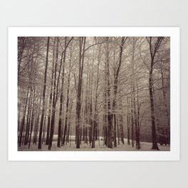 Indiana Winter Art Print