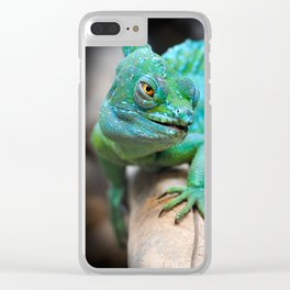 Gecko Reptile Photography Clear iPhone Case
