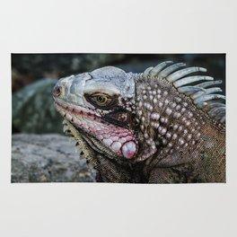 Portrait of an Iguana Rug