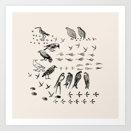 Black birds and their Footprints Art Print