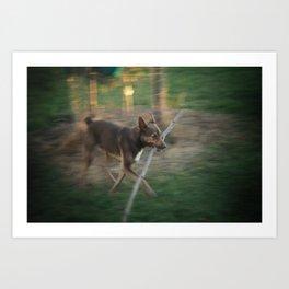 Fetch Art Print
