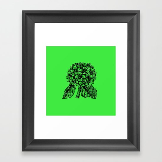 Green Hydrangea Framed Art Print