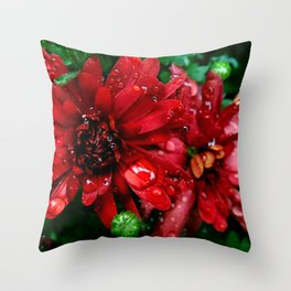 red n green Throw Pillow