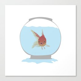 Stuck Goldfish Canvas Print
