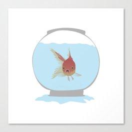 Stuck Goldfish Canvas Print