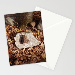 End of a Season Stationery Cards