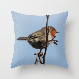 Beautiful robin Throw Pillow