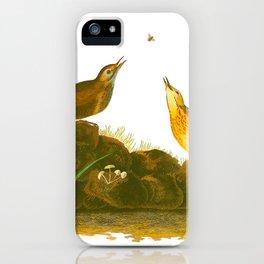 Brown Lark John James Audubon Vintage Scientific Birds Of America Illustration iPhone Case