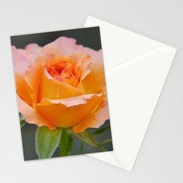 Beauty....... Stationery Cards