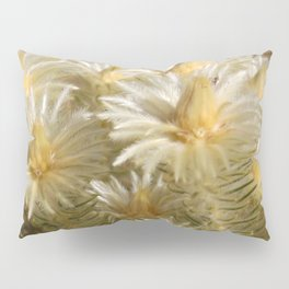 Fynbos Treasures Pillow Sham