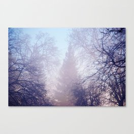 Blue Layers Canvas Print