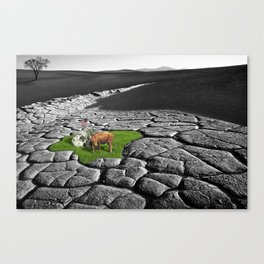 It is what it is. Canvas Print