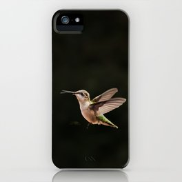 Hummingbirds and bee iPhone Case