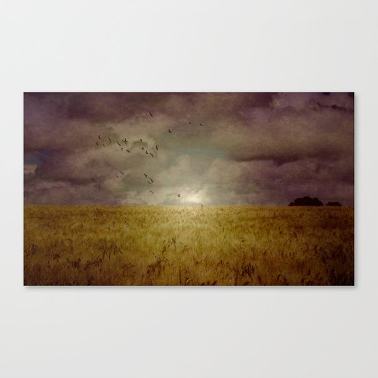 When we walked in fields of gold Canvas Print