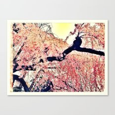 This is real Canvas Print