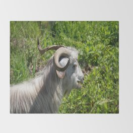 Side View of A Billy Goat Grazing Throw Blanket