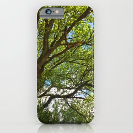 Branch Out iPhone Case