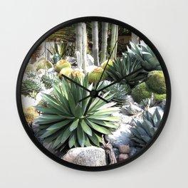 Agaves at Sherman Library and Gardens Wall Clock