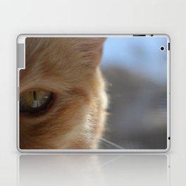 Pocko's Peepers Laptop & iPad Skin