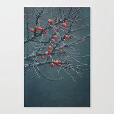 thorn Canvas Print