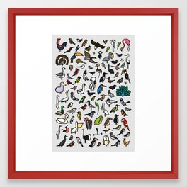100 Birds Poster Framed Art Print