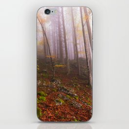 Autumn Morning Forrest iPhone Skin