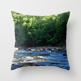 A Creek and Forest in West Virginia  Throw Pillow