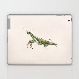 Mantis II Laptop & iPad Skin