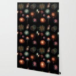 Fireworks Extravaganza Wallpaper