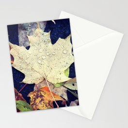 Raindrops on Autumn Leaves Stationery Cards