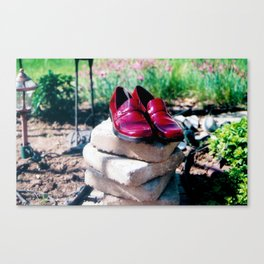 The Land of Oz Canvas Print