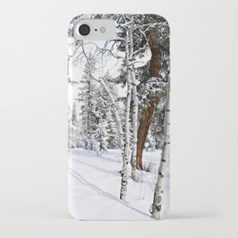 Colorado Scene iPhone Case