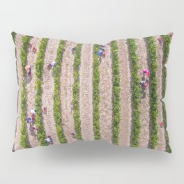 Grape Vine Pillow Sham