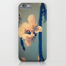 Tender Spring Slim Case iPhone 6s