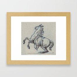Horse, Marly court, Louvre Framed Art Print