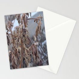 Afterlife Stationery Cards