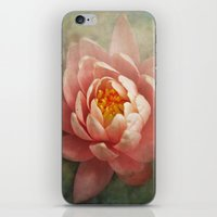 lotus iPhone & iPod Skins featuring Lotus by Pauline Fowler ( Polly470 )