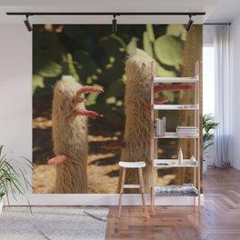 A Funny Sight Cacti Wall Mural